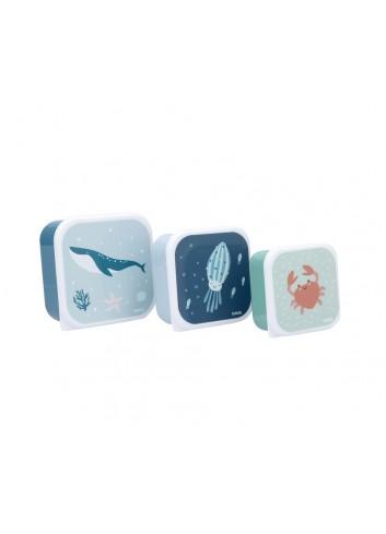 Conjunt de 3 capses Ocean